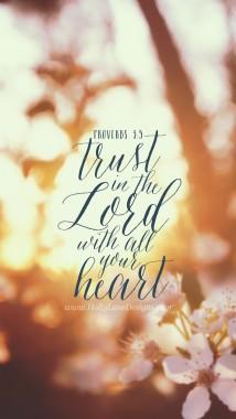 Bible Verse Wallpaper Proverbs 3 5 368x651 Download Hd Wallpaper Wallpapertip