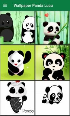 11 114655 panda lucu wallpaper wa
