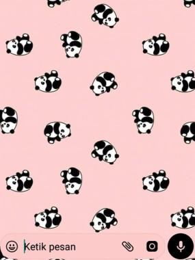 11 114669 cute panda