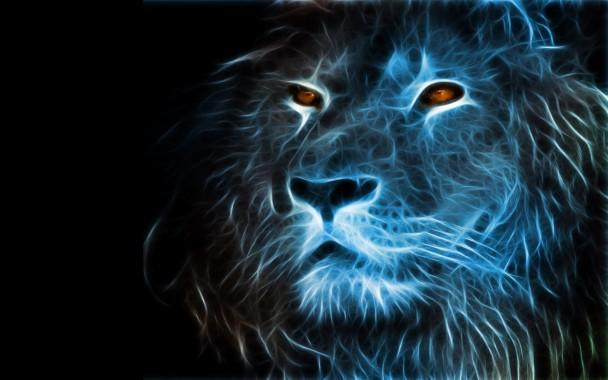 Lion Free Hd Wallpaper Downloads Lion Hd Desktop Wallpaper Line Animal Images Hd 1600x1000 Download Hd Wallpaper Wallpapertip