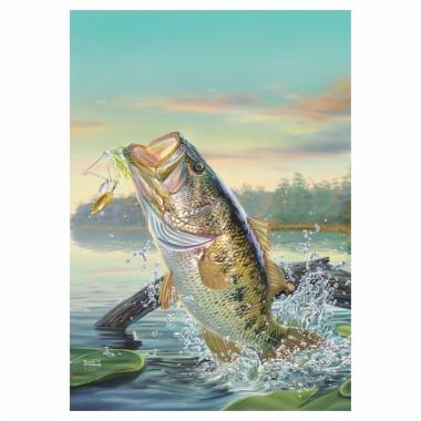 Largemouth Bass Wallpapers Bass Fishing Background For Iphone 1800x1800 Download Hd Wallpaper Wallpapertip