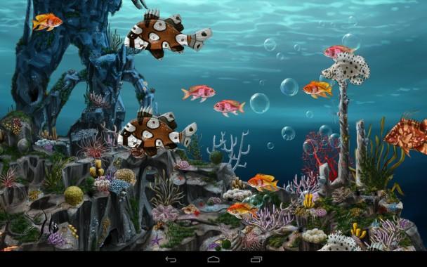 Ikan Bergerak Wallpapers Free Ikan Bergerak Wallpaper Download Wallpapertip