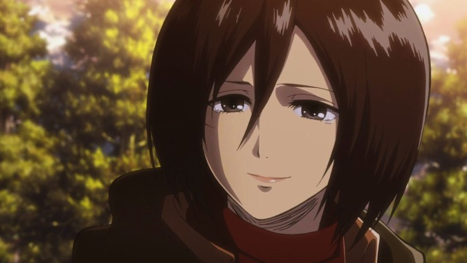 Mikasa Ackerman Desktop Widescreen Wallpaper Mikasa Ackerman Face 1920x1080 Download Hd Wallpaper Wallpapertip