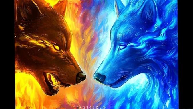 Fire Wolf Background Hd 1280x800 Download Hd Wallpaper Wallpapertip