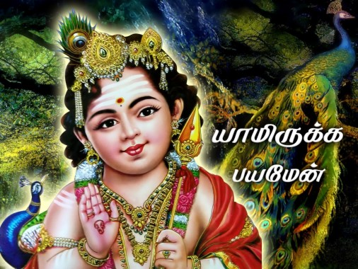 Murugan Wallpapers Free Murugan Wallpaper Download Wallpapertip