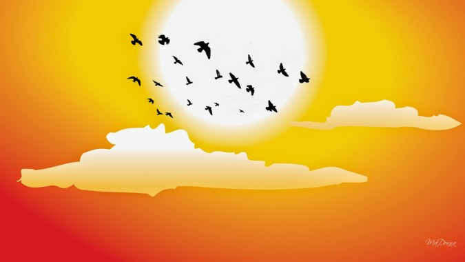 Download Free Hd Good Morning Wallpaper Morning Sun Rise With Birds 1600x900 Download Hd Wallpaper Wallpapertip