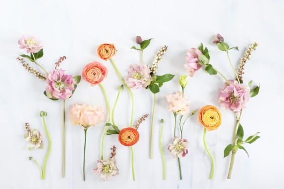 15 159953 823391 title digital blooms artistic flower flowers