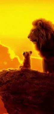 157 1573999 the lion king mufasa simba uhdpaper iphone lion