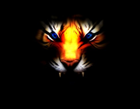 White Tiger With Blue Eyes Wallpaper 3d Wallpapers Black Tiger Wallpaper Hd Angry 1190x931 Download Hd Wallpaper Wallpapertip
