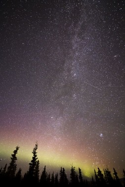 Lukisan Langit Malam Langit Pohon Bintang Malam 910x1365 Download Hd Wallpaper Wallpapertip