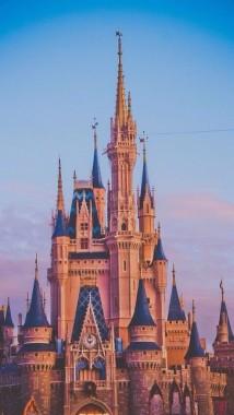Disneyland Iphone Wallpaper 1080x1920 Download Hd Wallpaper Wallpapertip