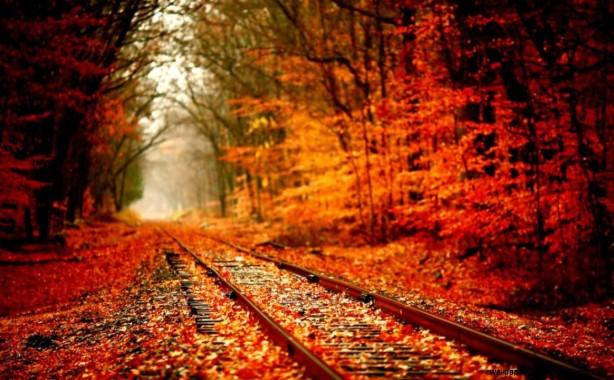 Hello Kelle Tumblr Fall Backgrounds Autumn Leaves Desktop 1164x720 Download Hd Wallpaper Wallpapertip