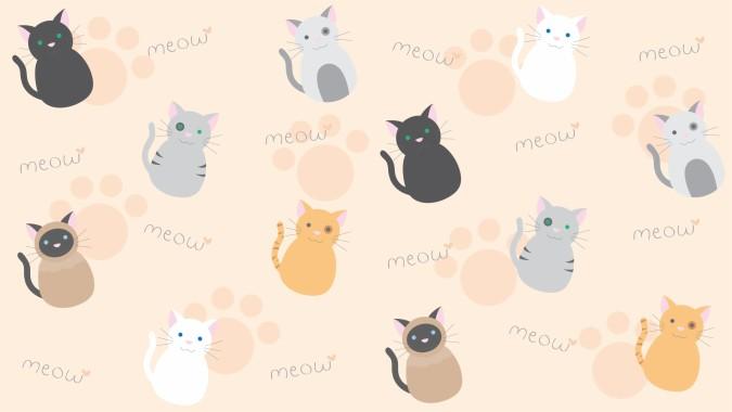 Cute Cat Wallpaper Laptop 3333x1875 Download Hd Wallpaper Wallpapertip