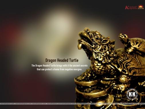Feng Shui Money Symbols Image Search Results Feng Shui Wealth Symbols 588x397 Download Hd Wallpaper Wallpapertip