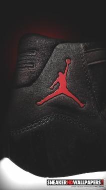 Air Jordan Flight Logo - 744x1392