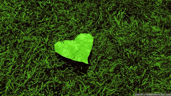 43 437807 heart leaf love nature wallpapers nature love widescreen