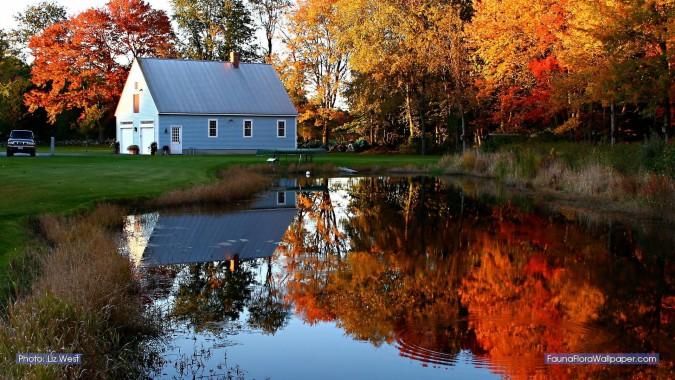 New England Fall Desktop Wallpaper 43 England Fall Autumn New
