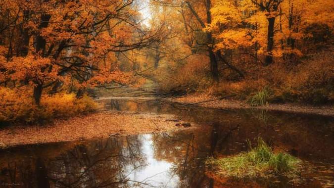 54 544652 river at autumn wallpaper autumn wallpaper hd