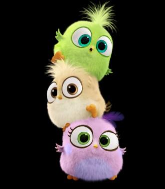 Cute Baby Angry Birds 524x600 Download Hd Wallpaper Wallpapertip