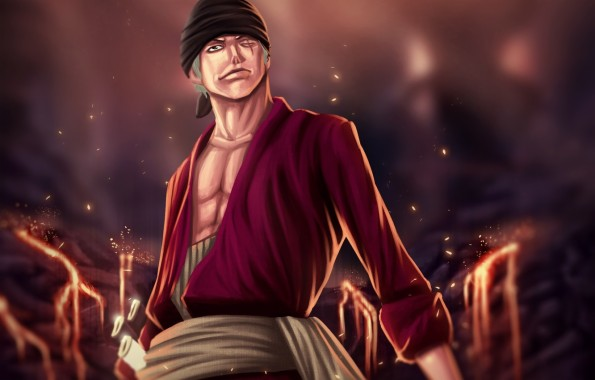 Wallpapers 3d One Piece Group Roronoa Zoro 1162x860 Download Hd Wallpaper Wallpapertip