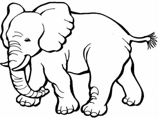 Baby Mouse Coloring Page Free Mouse Coloring Page 584x451 Download Hd Wallpaper Wallpapertip