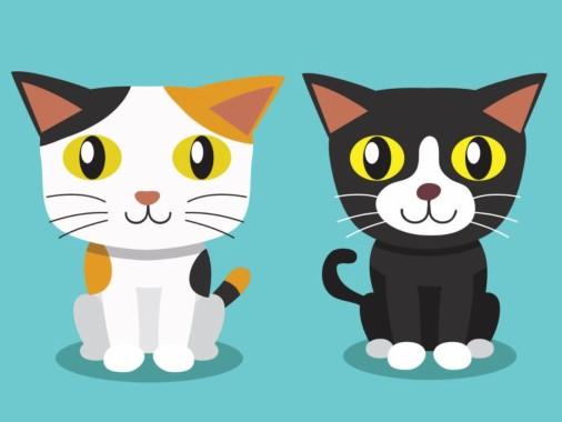 63 631668 gambar kartun lucu kucing gatos animados parados