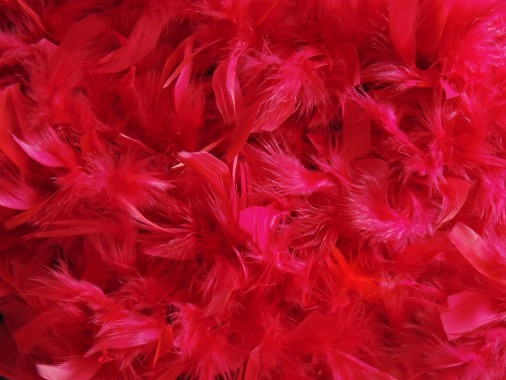 65 652413 wallpaper merah maroon