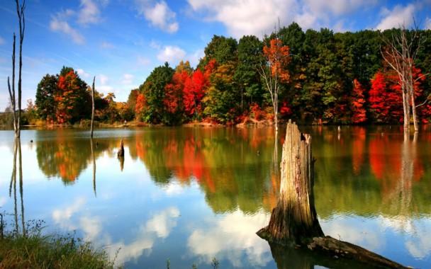 Autumn Scene Wallpapers 54 Autumn Wallpaper Examples Autumn Wallpapers For Desktop 1920x1080 Download Hd Wallpaper Wallpapertip