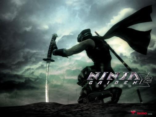 Ryu Hayabusa Ninja Gaiden 2 1280x960 Download Hd Wallpaper