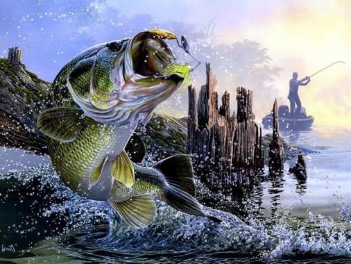 Fly Fishing Computer Backgrounds 1600x1200 Download Hd Wallpaper Wallpapertip