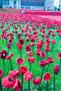 People In The Background Already Starting To Dismantle Crochet Poppies Chelsea Flower Show 700x1050 Download Hd Wallpaper Wallpapertip