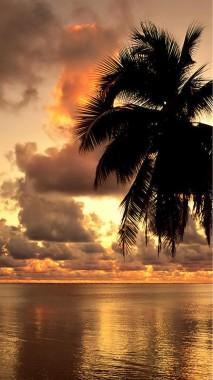 Sonnenuntergang Strand Wallpaper Hd Fur Handy Tapeten Hd Android 1080x1920 Wallpapertip