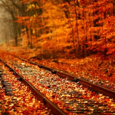 Fall Wallpaper Tumblr 860x860 Download Hd Wallpaper Wallpapertip